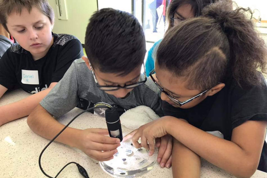 Kids using the Digital Microscope