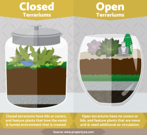 closed-open-terrariums