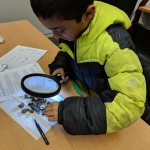 Youth participant examining findings with LED magnifying glass.