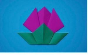 Origamido Tulip