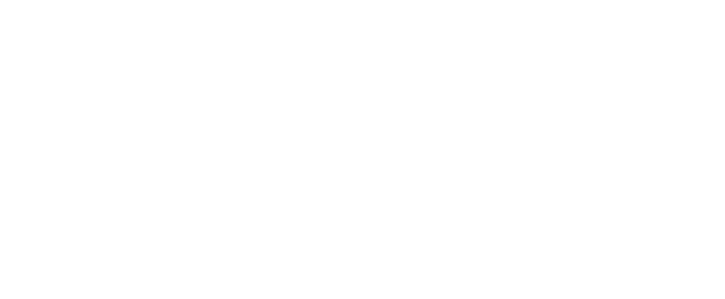 Summer of Space Logo