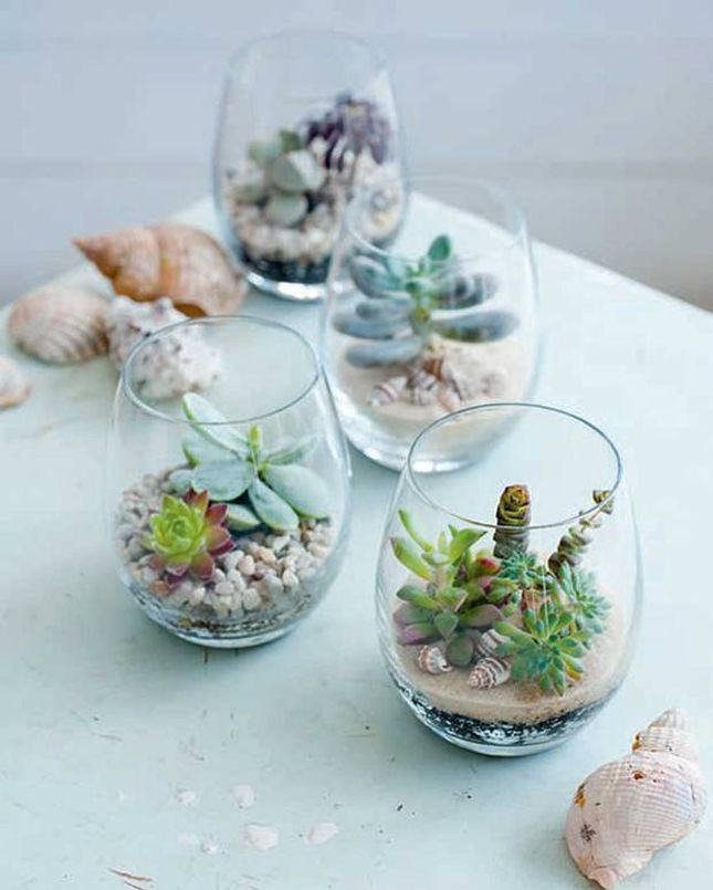 Tiny Terrariums Star Net