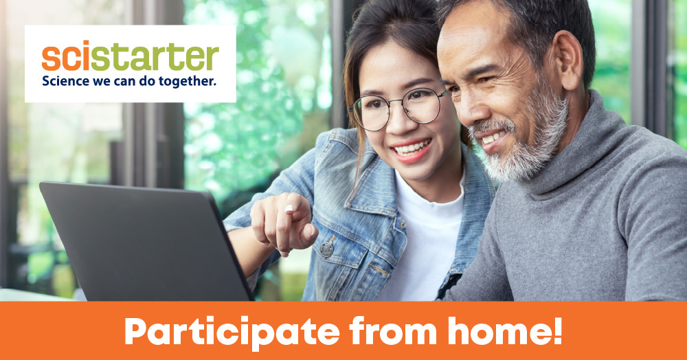 participate-from-home